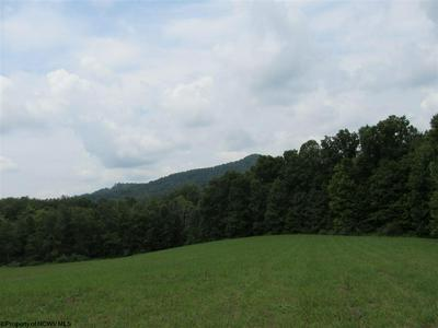 TBD 40 ACRES RT 76 ROAD, Philippi, WV 26416 - Photo 1