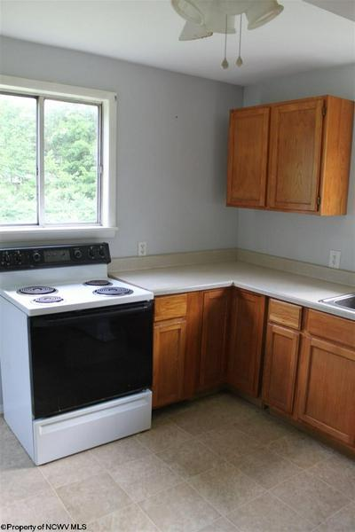 8401 WEBSTER RD, Camden-On-Gauley, WV 26208 - Photo 2