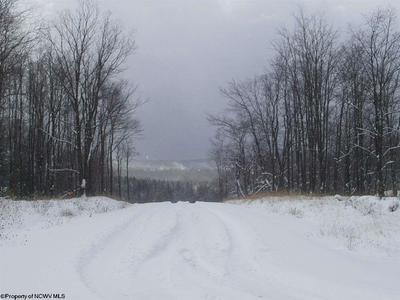 88 GONDOLA CT, Davis, WV 26260 - Photo 2