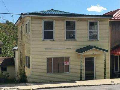 463 WILLIAM AVE, Davis, WV 26260 - Photo 1