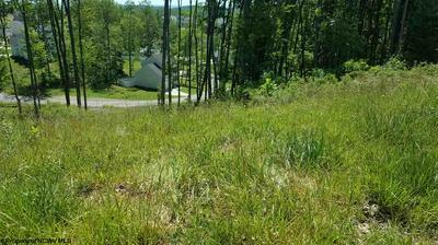 175 CADDIE CT, Maidsville, WV 26541 - Photo 1