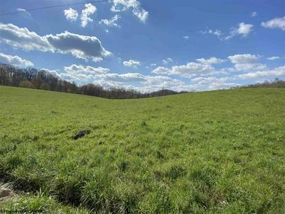 93 ROGERS HILL RD, Lumberport, WV 26386 - Photo 2