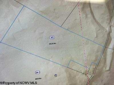 3 LENOX LN, Albright, WV 26519 - Photo 2