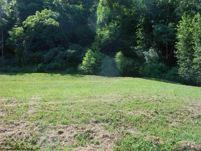 4193 BIG RUN RD, Walkersville, WV 26447 - Photo 2