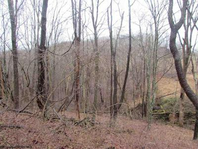 47 W ROUTE ACRES, Smithville, WV 26178 - Photo 1