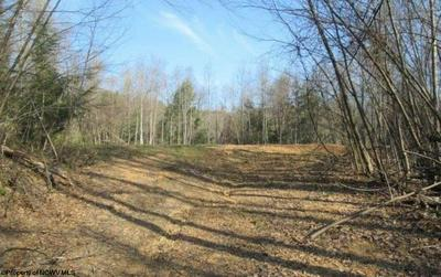 01 SHAVERS FORK ROAD, Parsons, WV 26287 - Photo 1