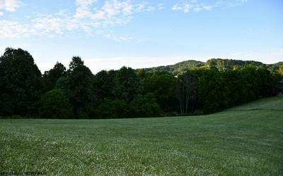 TBD LAKEVIEW DRIVE, Horner, WV 26372 - Photo 1