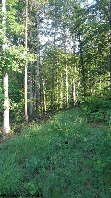 302 HUNTERS COVE RD, Walkersville, WV 26447 - Photo 1