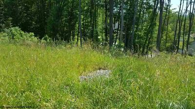 174 CADDIE CT, Maidsville, WV 26541 - Photo 2
