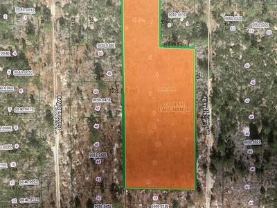 00 CALIFORNIA DR, HAWTHORNE, FL 32640 - Photo 2