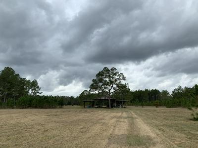 0 CO RD 1471, WALDO, FL 32694 - Photo 2