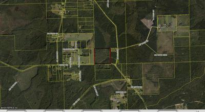 000 CO RD 125, RAIFORD, FL 32083 - Photo 1