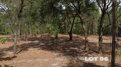 15433 BULLOCK BLUFF RD, BRYCEVILLE, FL 32009 - Photo 2