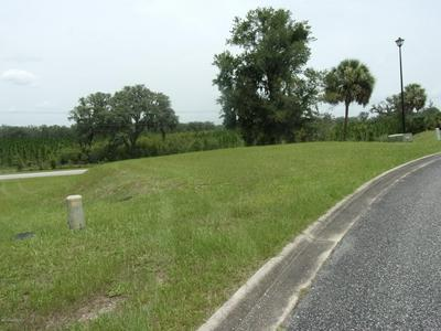 104 SIESTA CIR, WELAKA, FL 32193 - Photo 2