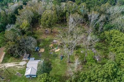 1736 BAXLEY RD, MIDDLEBURG, FL 32068 - Photo 1