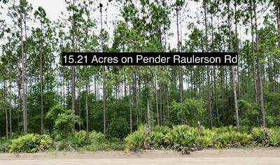 0 PENDER RAULERSON RD, SANDERSON, FL 32087 - Photo 2