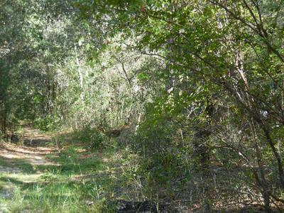0 LAKE SERENA RD, MELROSE, FL 32666 - Photo 2