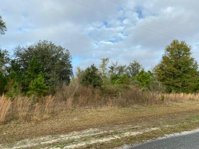 2 CALLOWAY TRL, LAKE BUTLER, FL 32054 - Photo 2