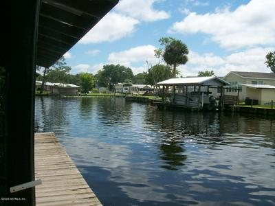 128 PARADISE DR, WELAKA, FL 32193 - Photo 1