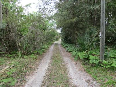0 UNASSIGNED LOCATION, WELAKA, FL 32193 - Photo 2