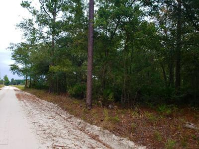0 SE HIGH FALLS RD, LAKE CITY, FL 32025 - Photo 1