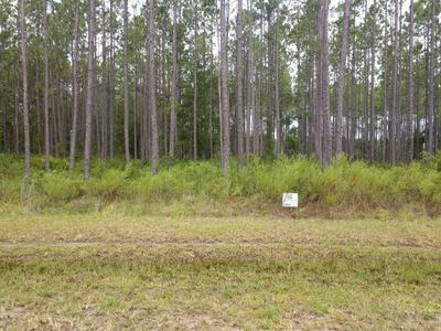 0 DEEP CREEK DR, BRYCEVILLE, FL 32009 - Photo 2
