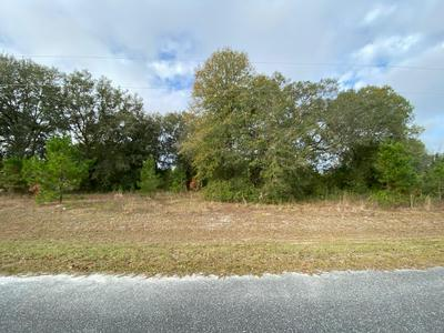 1 CALLOWAY TRL, LAKE BUTLER, FL 32054 - Photo 1