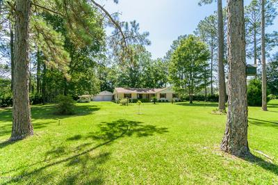 11321 SUNOWA SPRINGS TRL, BRYCEVILLE, FL 32009 - Photo 2