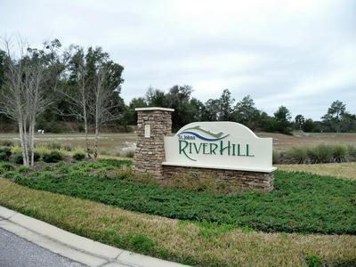 (LOT 32) RIVER HILL DR, WELAKA, FL 32193 - Photo 1