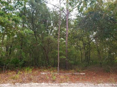 0 SE HIGH FALLS RD, LAKE CITY, FL 32025 - Photo 2