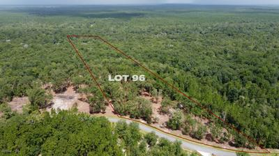 15433 BULLOCK BLUFF RD, BRYCEVILLE, FL 32009 - Photo 1