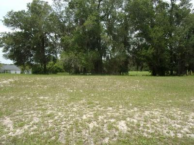 106 VILLAGE DR, WELAKA, FL 32193 - Photo 2
