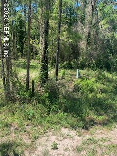 101 ANNE BLVD, GEORGETOWN, FL 32139 - Photo 2