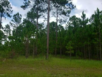 0 COUNTY ROAD 231, LAKE BUTLER, FL 32054 - Photo 2