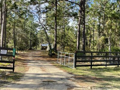 8060 FOREST HILLS RD, MELROSE, FL 32666 - Photo 1
