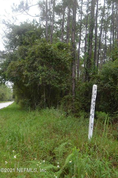 0 0 S PALMETTO AND CR 90 W, BUNNELL, FL 32110 - Photo 2