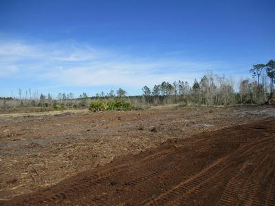 LOT 1 OLD DIXIE HWY, Hilliard, FL 32046 - Photo 2