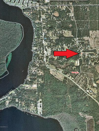 1001 SHELL ST, WELAKA, FL 32193 - Photo 2