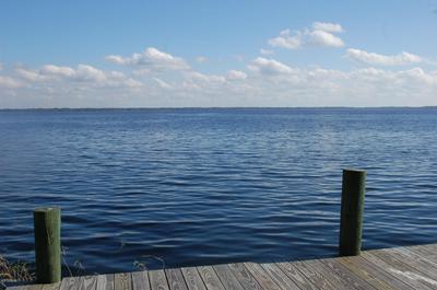 10305 NE COUNTY ROAD 1469, EARLETON, FL 32631 - Photo 1