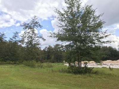 15460 BULLOCK BLUFF RD, BRYCEVILLE, FL 32009 - Photo 2
