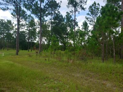0 COUNTY ROAD 231, LAKE BUTLER, FL 32054 - Photo 1