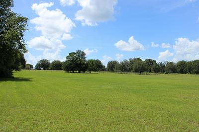 000 NW 171ST RD, ALACHUA, FL 32615 - Photo 2