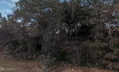 212 SQUIRREL TREE TRL, SATSUMA, FL 32189 - Photo 1