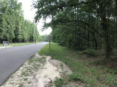 0 PRIMROSE CIR, Middleburg, FL 32068 - Photo 1