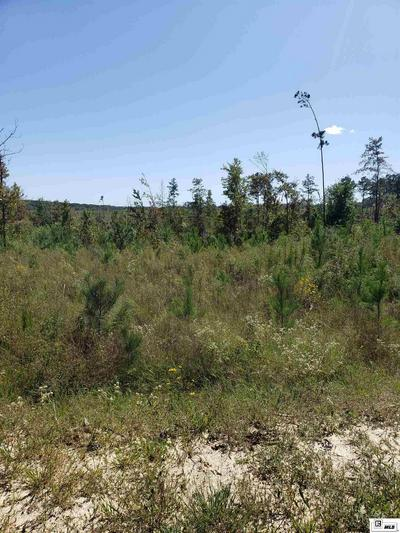 TRACT 4 HANEY SMITH ROAD, Choudrant, LA 71227 - Photo 1