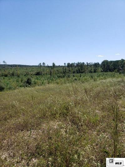 TRACT 2 HANEY SMITH ROAD, Choudrant, LA 71227 - Photo 2