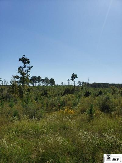 TRACT 3 HANEY SMITH ROAD, Choudrant, LA 71227 - Photo 2
