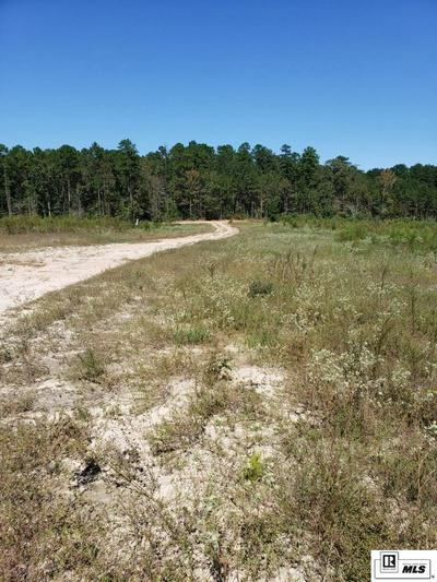 TRACT 2 HANEY SMITH ROAD, Choudrant, LA 71227 - Photo 1