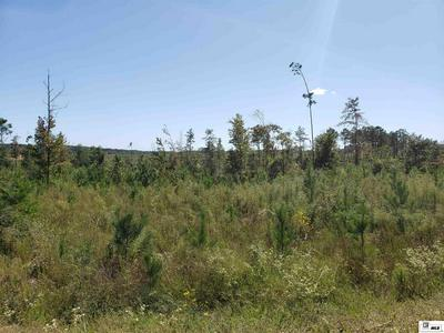 TRACT 4 HANEY SMITH ROAD, Choudrant, LA 71227 - Photo 2