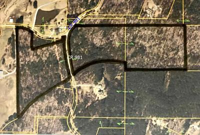 RD 981, Saltillo, MS 38866 - Photo 1